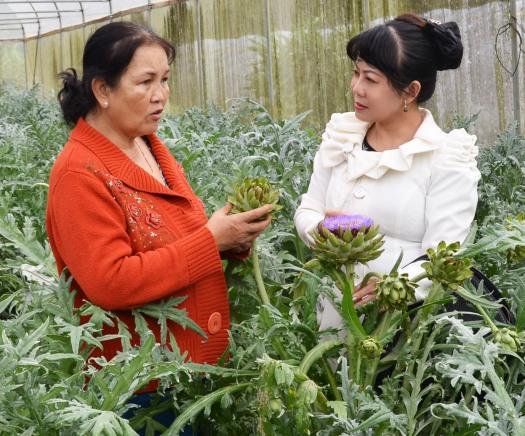 Chị Sợi trò chuyện cùng tác giả trong vườn Atisô