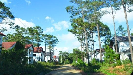 Nhiều biệt thự xây thô xong bỏ hoang