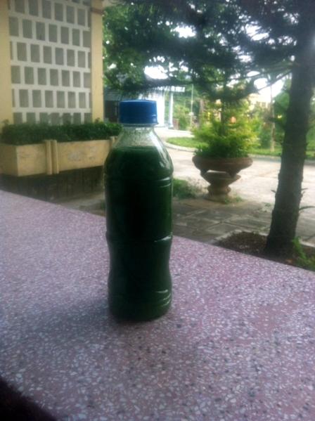 Ảnh chai nước bị lấy từ sông Ba đoạn qua xã Chư Ngọc bị phú dưỡng hóa