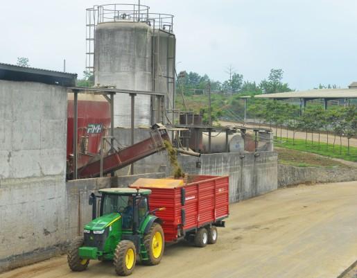 Rót thức ăn đã phối trộn vào xe chở đi cho bò ăn