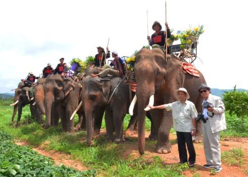 Nguyên phó Chủ tịch tỉnh Lê Văn Quyết và kỹ sư Nguyễn Quyền bạn cũ gặp lại bên voi Thoong Răng