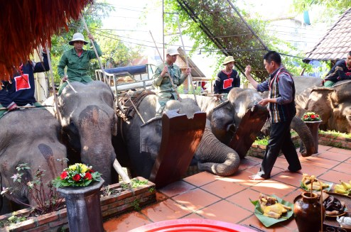 Ông Long thực hiện các nghi thức cúng sức khỏe cho đàn voi nhà